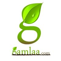 GAMLAA.com